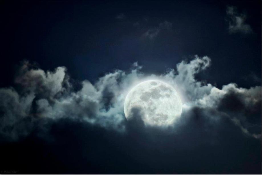 Amor à Lua