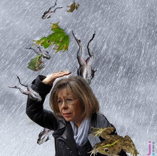 maria de belem chuva de rãs